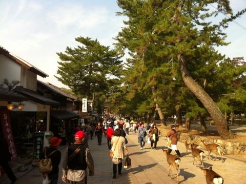 Parc Nara