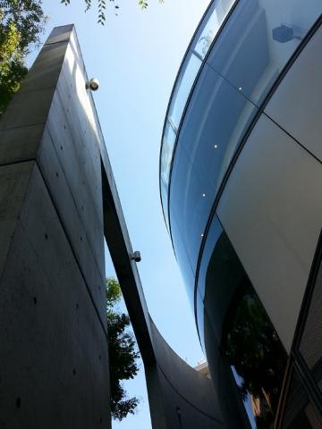 Collezione, Tadao Ando