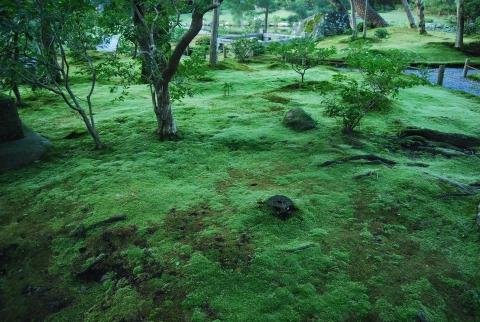 Murin-an, Jihei Ogawa
