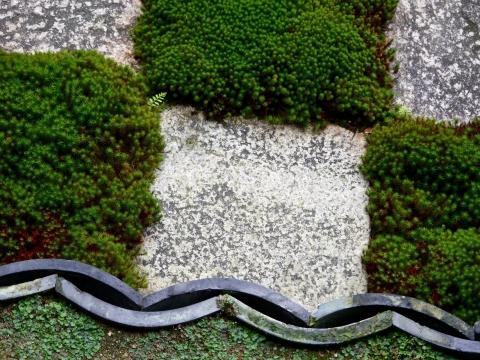 Tofukuji Honbo garden, Mirei Shigemori (photo: Sylvie Lagabrielle)
